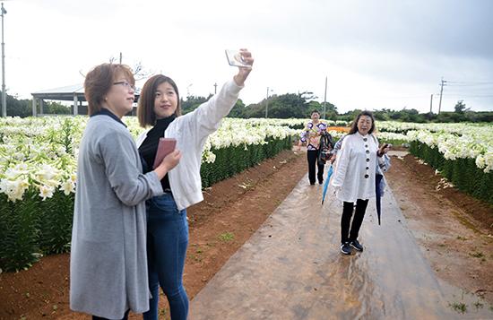 和泊町にフラワー都市集まる – 奄美新聞