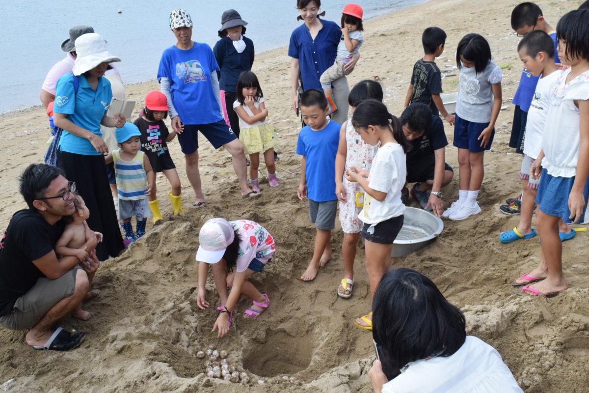 屋仁小・ウミガメ保護プロジェクト