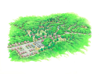 新「森の館」用地造成始まる