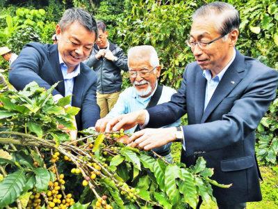 徳之島コーヒー生産支援PJ