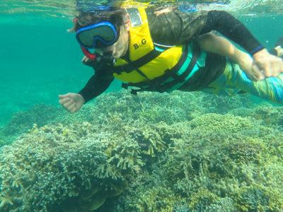サンゴの大切さ知る