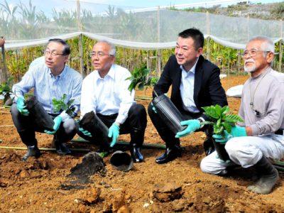 AGF実証農場「苗植え式」