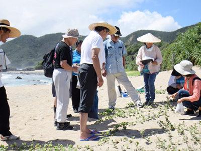 「砂浜教室in奄美大島」