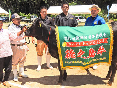 徳州肉用牛共進会