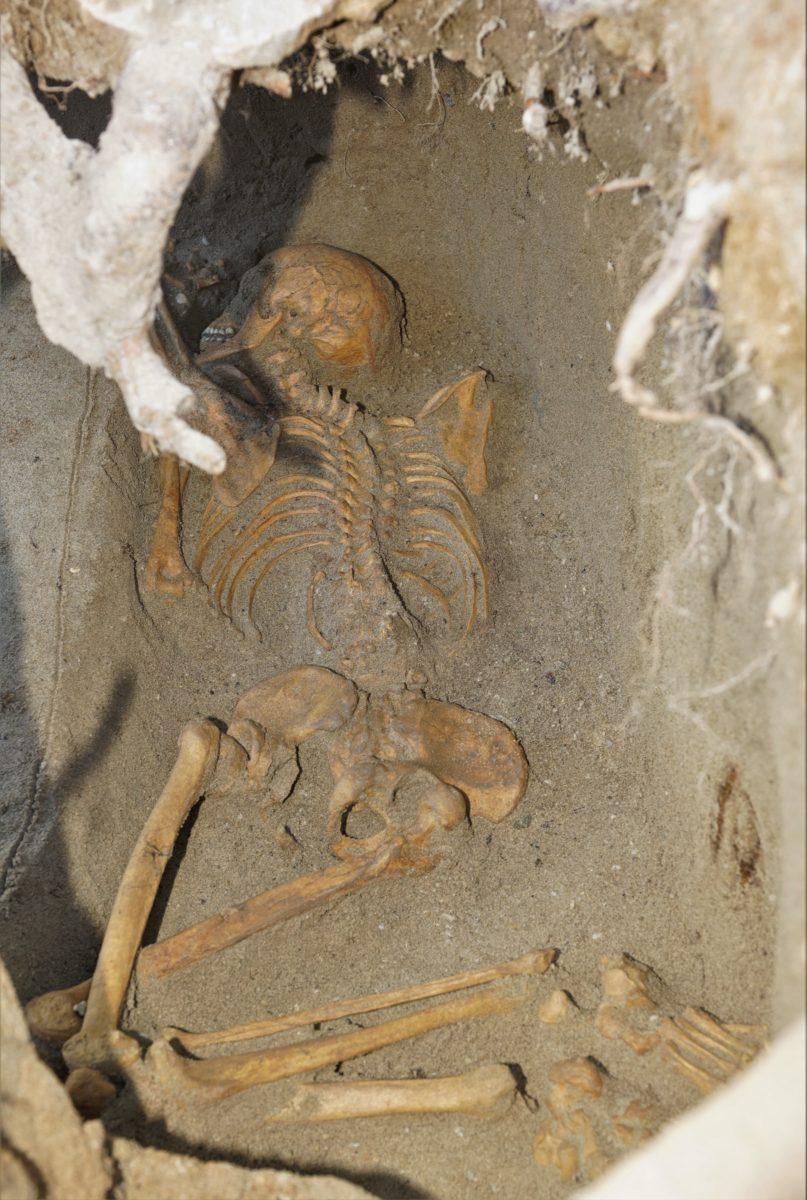 中世期の人骨1体検出