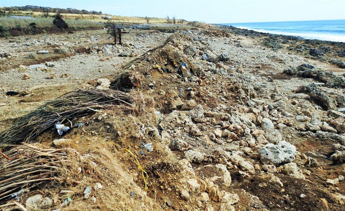 高潮被害、農地にも大打撃