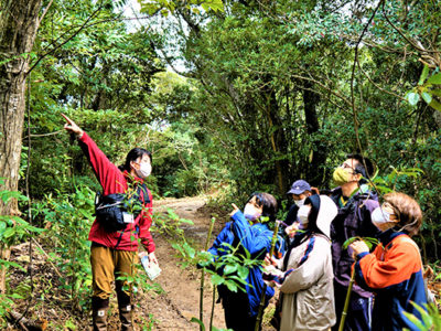 「カムィヤキの森」自然・文化ふれる