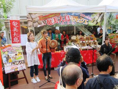 吉祥寺で奄美大島物産展
