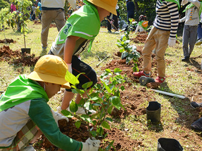 知名町植樹祭
